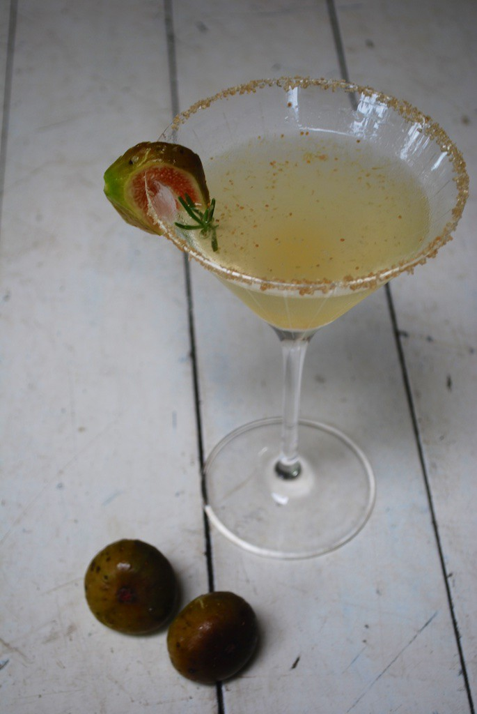 Vodka - Fig Martini
