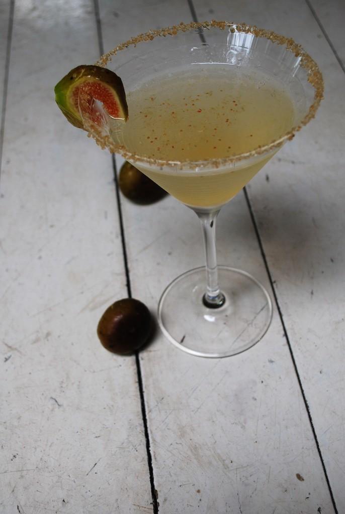 Fresh Fig Martini - Simply Vodka