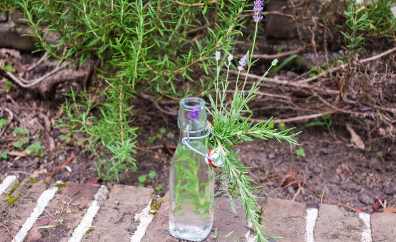 Lavender & Rosemary Infused Vodka